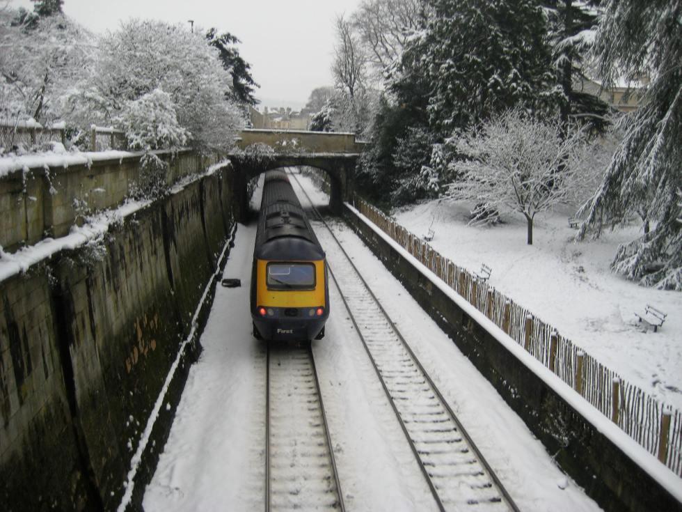 train on snowy sydney gardens