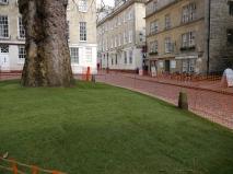Where the grass isn't alwaysgreener.