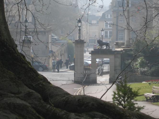 Royal Victoria Park improvements underway thismonth.