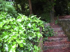 The steps between pub and brewery