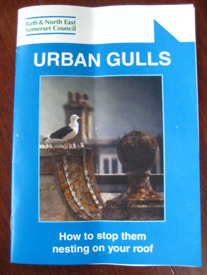 Little booklet giving gulls the bird!