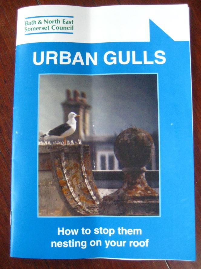 Little booklet giving gulls thebird!