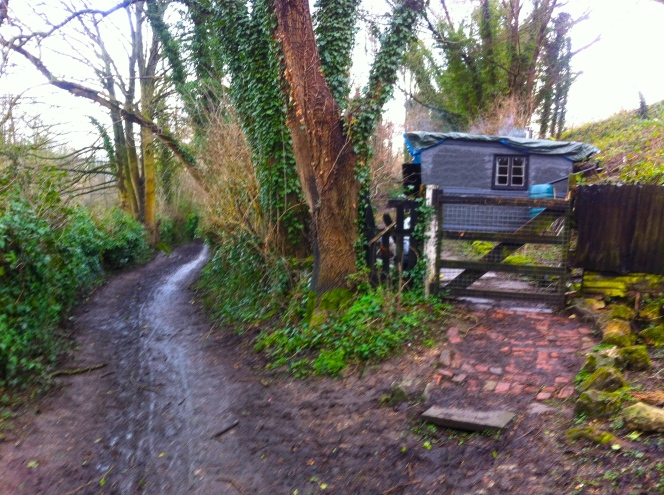 Towpath work due to start end of February.