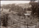 A view of the arboretum at Eagle House 1909. © Bath in Time