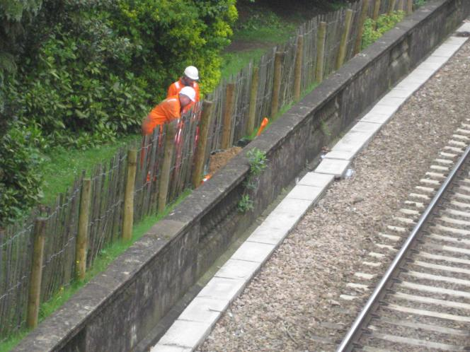 Digging gets underway in SydneyGardens