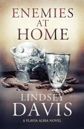 enemies at home cover image