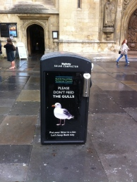 The new seagull campaign message. The poster-clad solar powered bin in Abbey Churchyard.