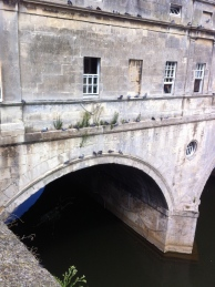 Nature getting a grip on Pulteney Bridge