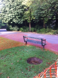 The sink hole in Sydney Gardens