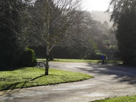 Winter sunshine in Sydney Gardens