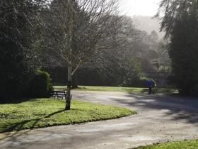 Winter sunshine in Sydney Gardens