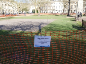 The new turf can be seen on The Lawn in Queen Square.