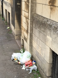 There is too much of this around Bath. The bags get kicked or pecked to pieces.
