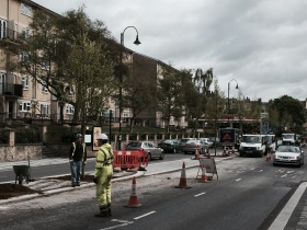 The new trees arriving on the London Road