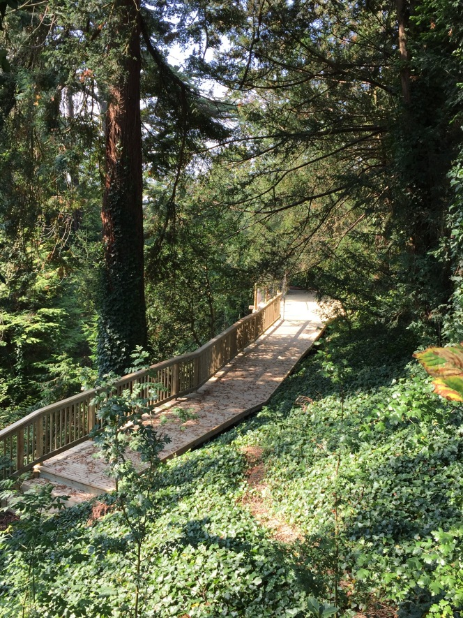 Step out on the Dell's aerialwalkway!
