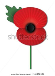 Remembrance poppy.