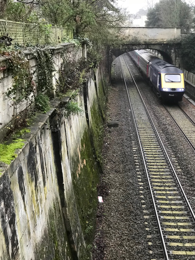 Buddleia versus Brunel.