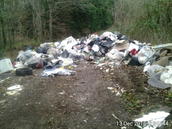 Fly-tipper gets heavy fine for despoiling​ Bath beauty spots.